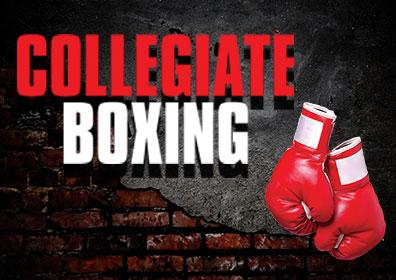 Collegiate Boxing Logo and Boxing Gloves