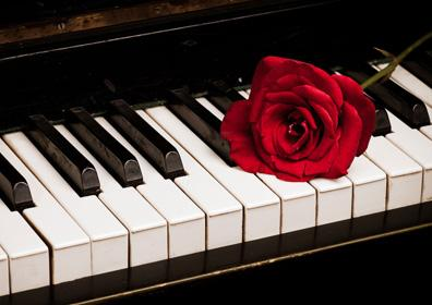 Roxy Piano with Red Rose