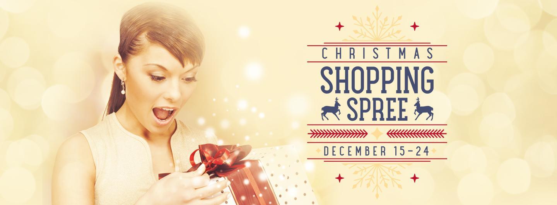 2019 Christmas Shopping Spree