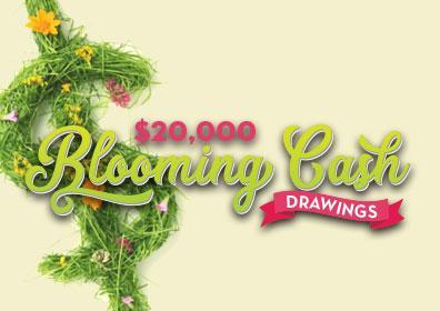 $20,000 Blooming Cash Drawings
