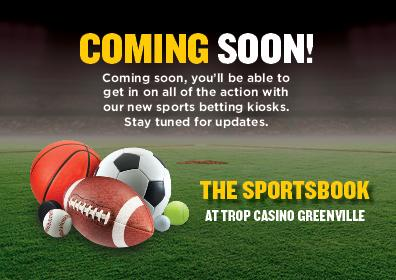 The sports book sports betting image