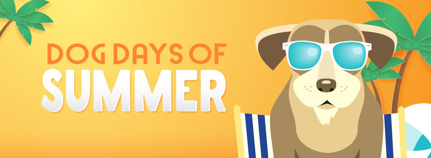"Graphic Design image with orange background, palm trees on left and right, dog with sunglasses and text overlay reading ""Dog Days of Summer"""