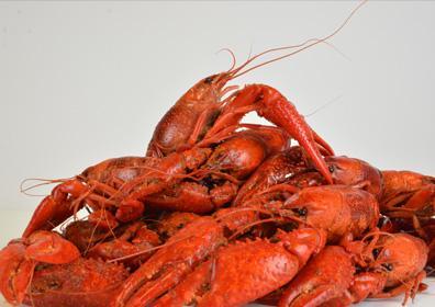 Crawfish image