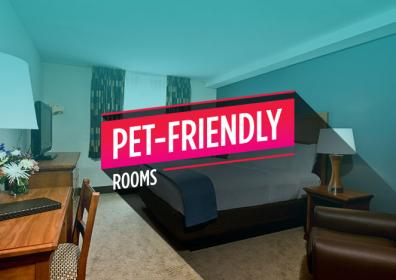 "hotel room with the words ""pet-friendly rooms"""