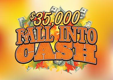 $35,000 Fall Into Cash Image