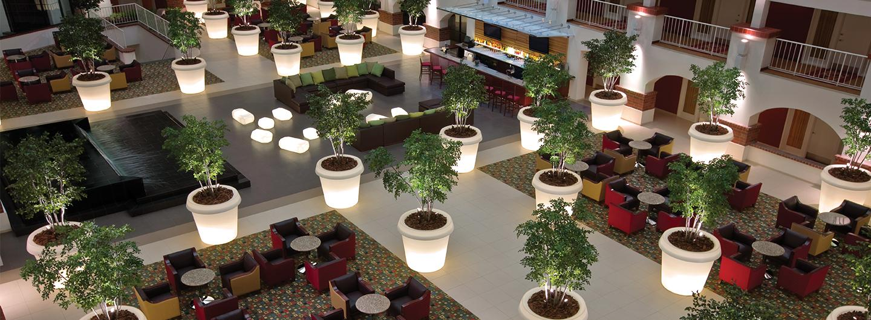 Hotel lumiere lobby