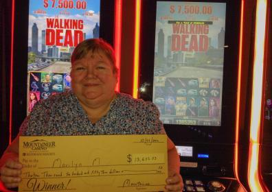 $13653 Winner