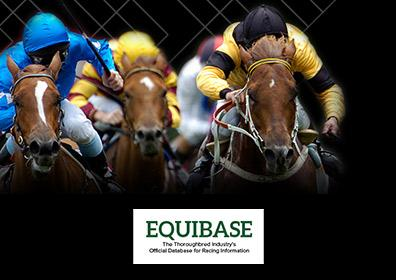 Live horse race with Equibase logo on image