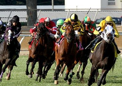 Live race at the Mountaineer Resort and Racetrack