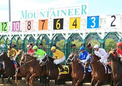 Live horse race at Mountaineer