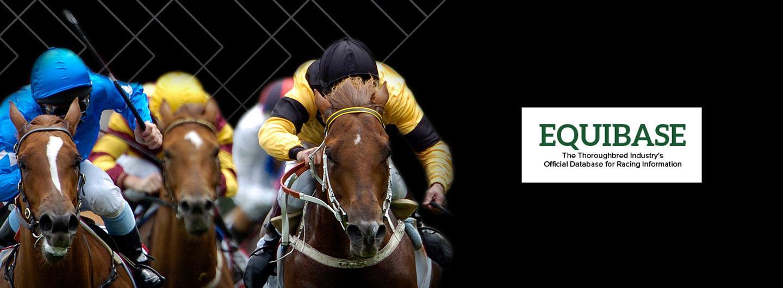 Live horse race with Equibase logo on image