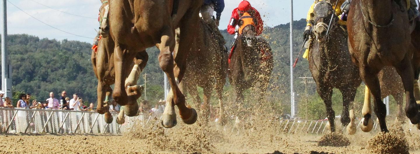 A race at Mountaineer Racetrack with an emphasis on the track conditions with mud coming off the track