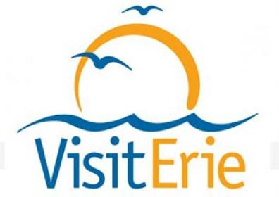 Logo of visiterie.com website