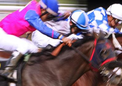 A live horse race at Presque Isle Downs & Casino