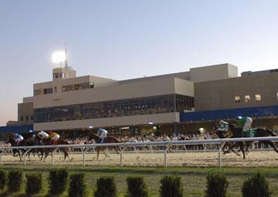 Looking towards Presque Isle Downs during a horse race