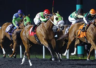 Live action shot of a horse race at Presque Isle Downs
