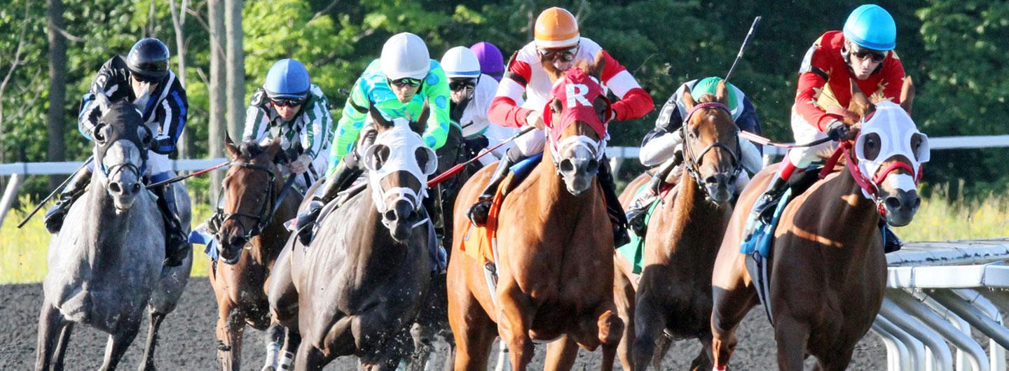 A live horse race at Presque Isle Downs