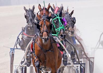 Horses racing at Eldorado Scioto Downs in Columbus, Ohio
