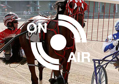 "Live harness horse race about to begin with an, ""On Air"" logo on top of the image"