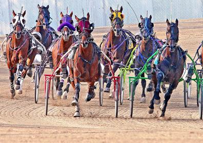 Harness Racing at Eldorado Scioto Downs in Columbus, Ohio