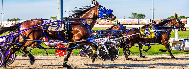 Graphic design photo featuring horse races
