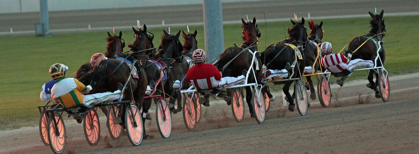 Looking towards the back of a live harness race at Scioto Downs