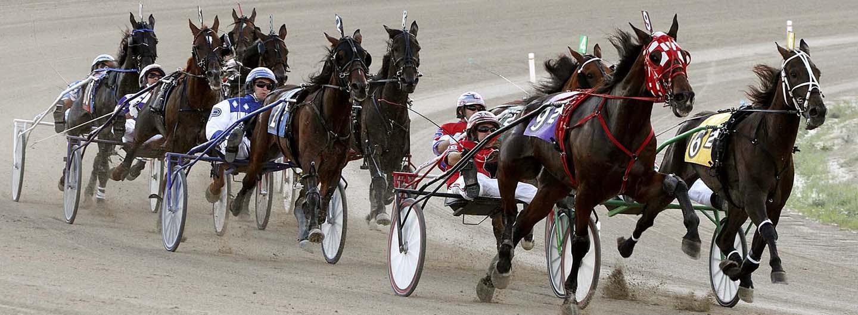 Live Harness Racing at Eldorado Scioto Downs