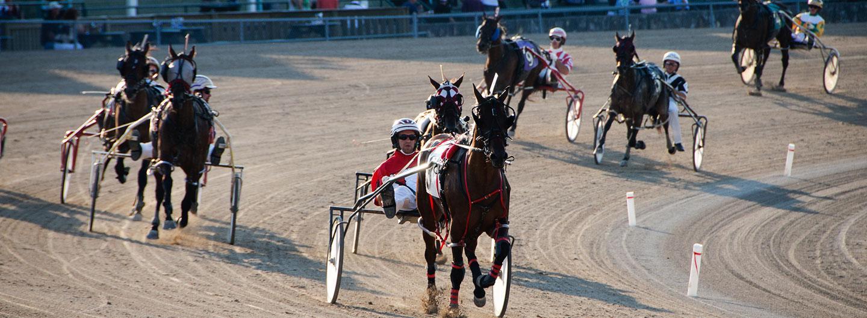 Live harness horse race in progress at Scioto Downs