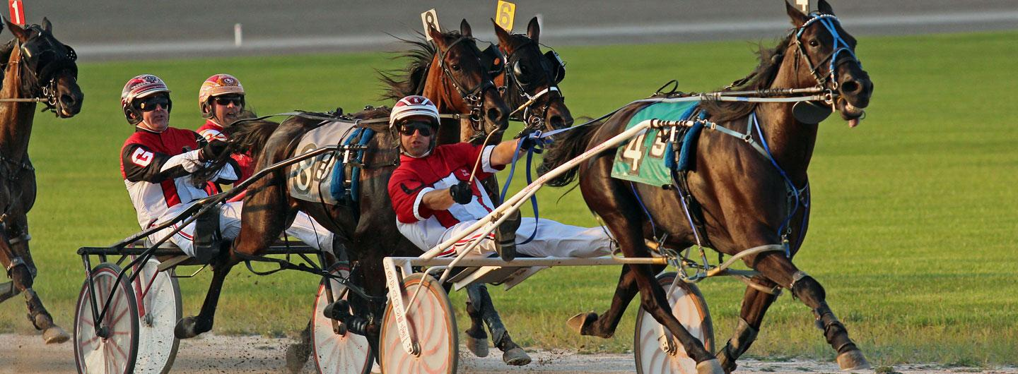 Live harness horse race in progress at Scioto Downs