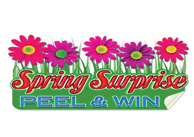 Spring surprise text with green grass and flowers