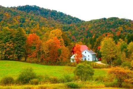 New England Scenery(Oct 2009)