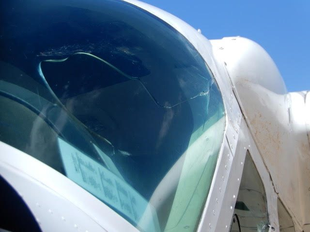 bird strike damage