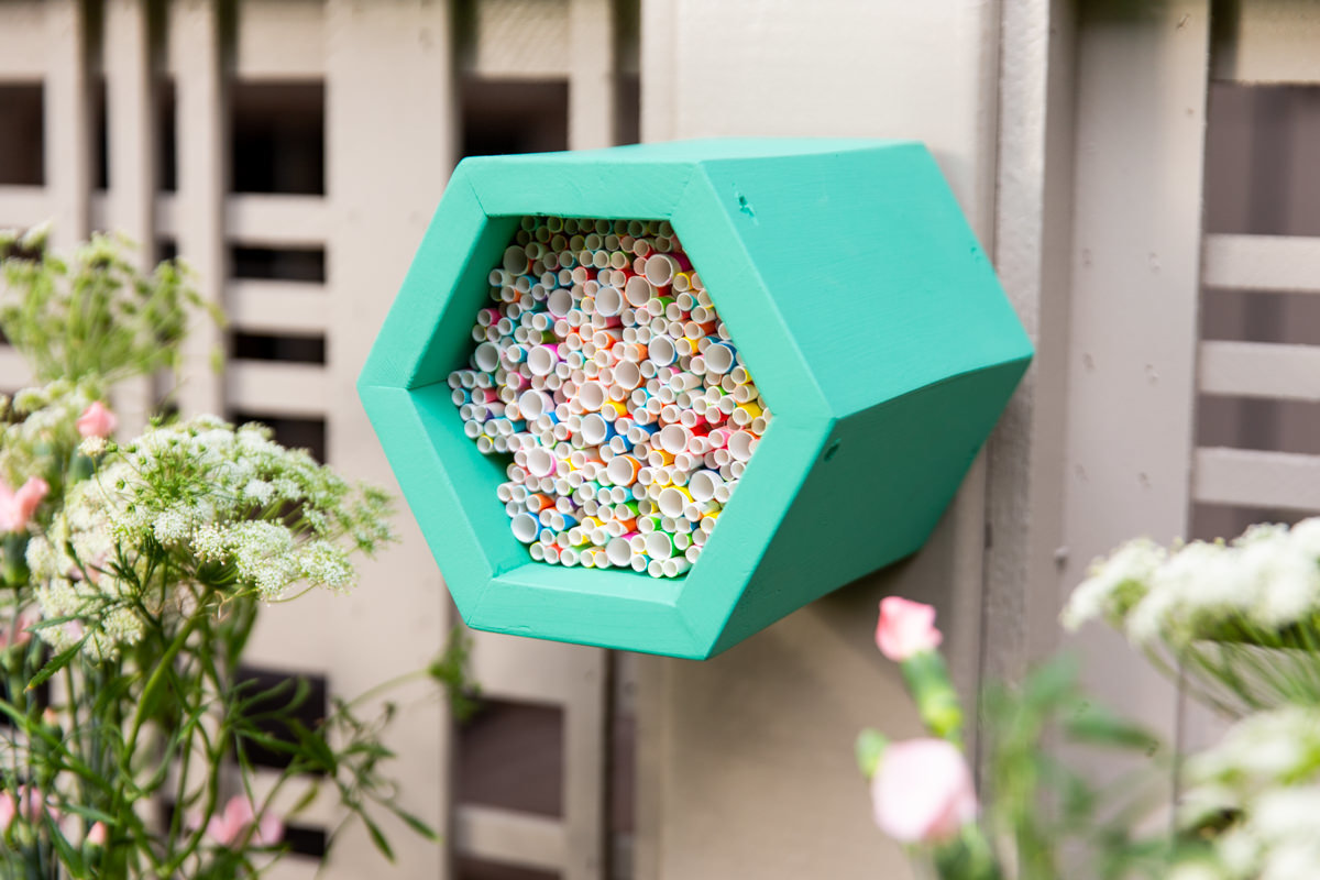 make a mason bee beehive at Seattle garden show