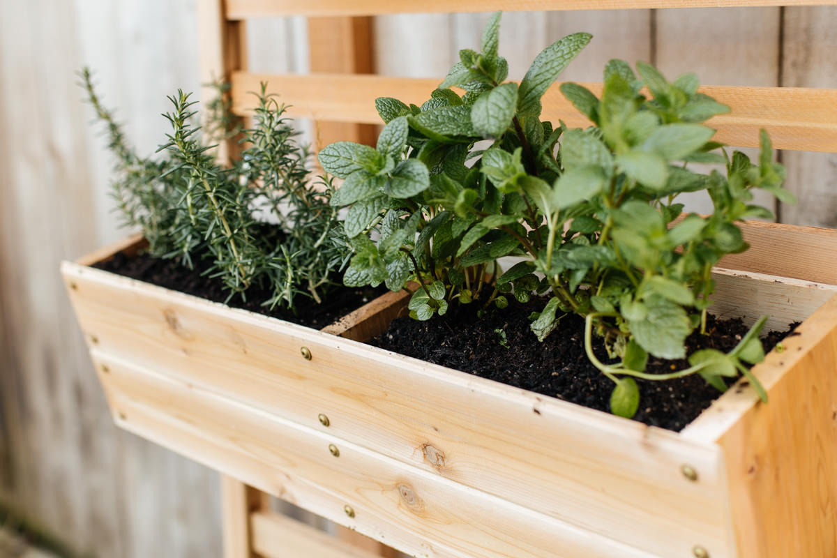 make a vertical planter at Seattle garden show