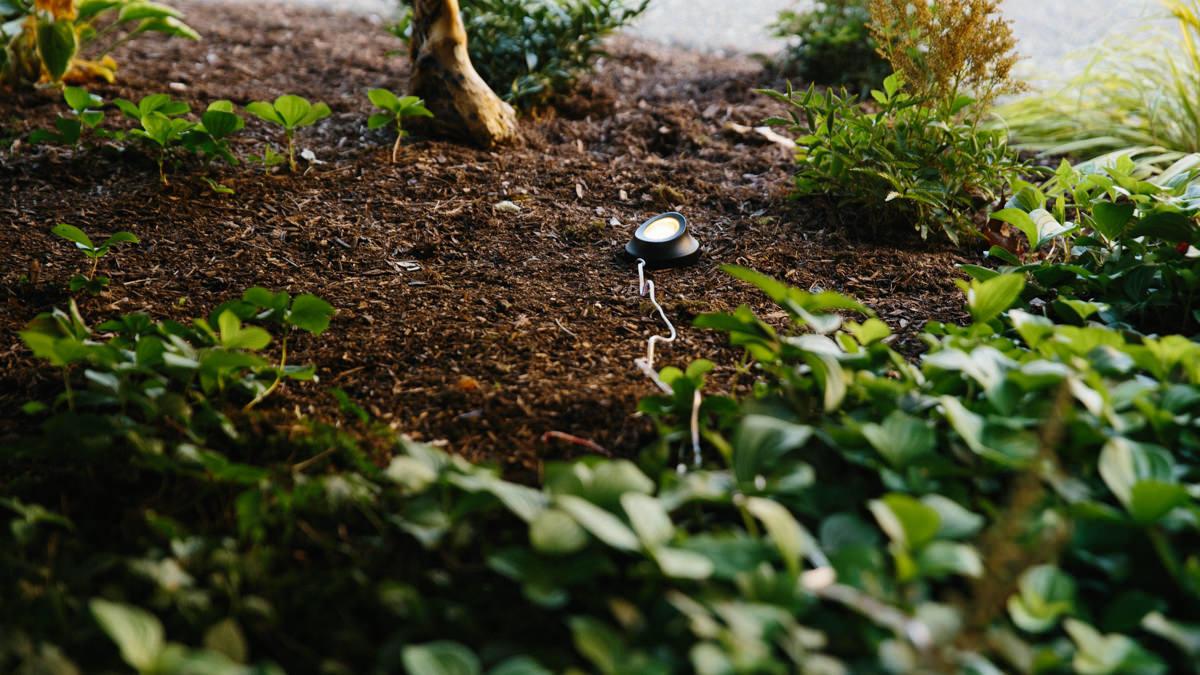 burying landscape wires