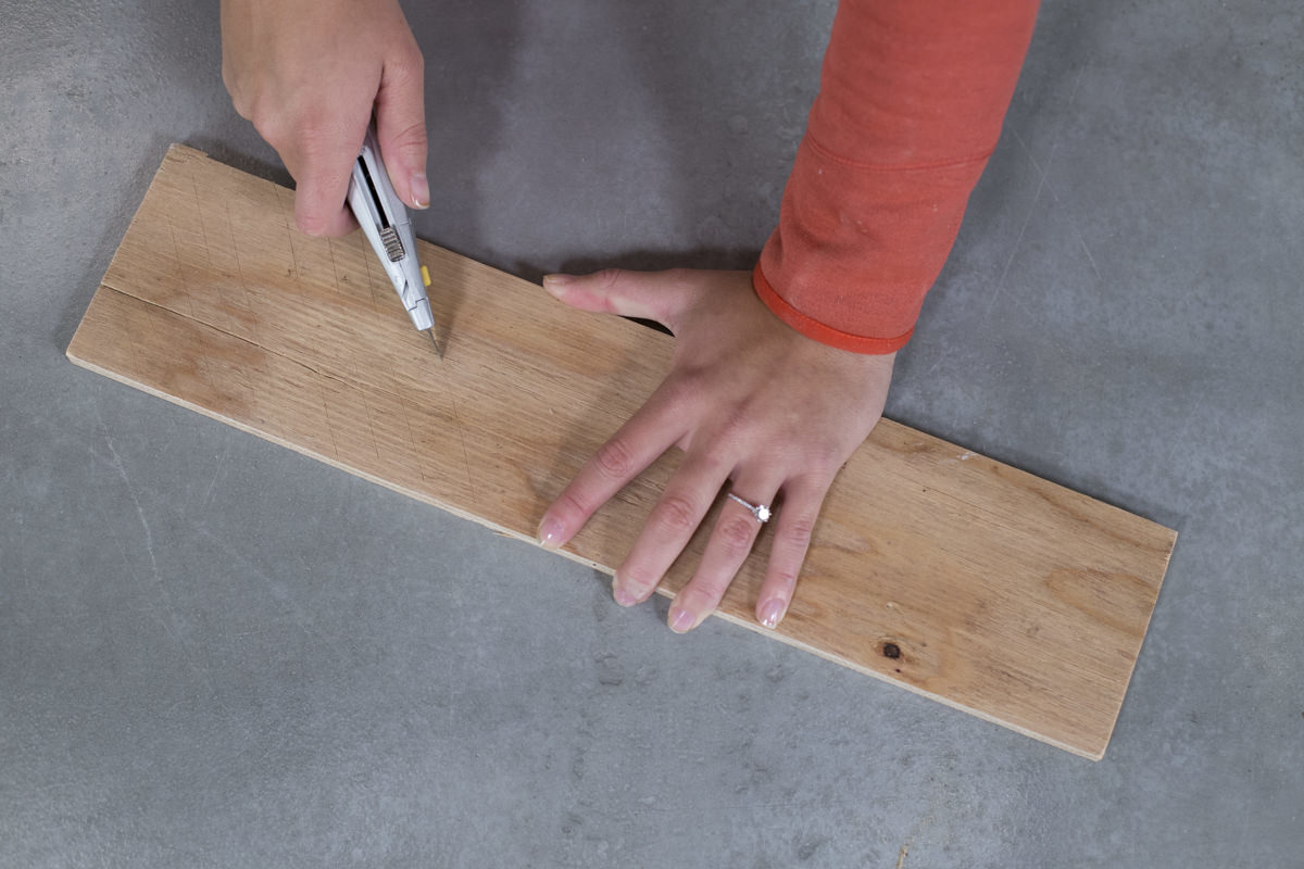 Dunn DIY How to Build a Bat Box Seattle WA 4