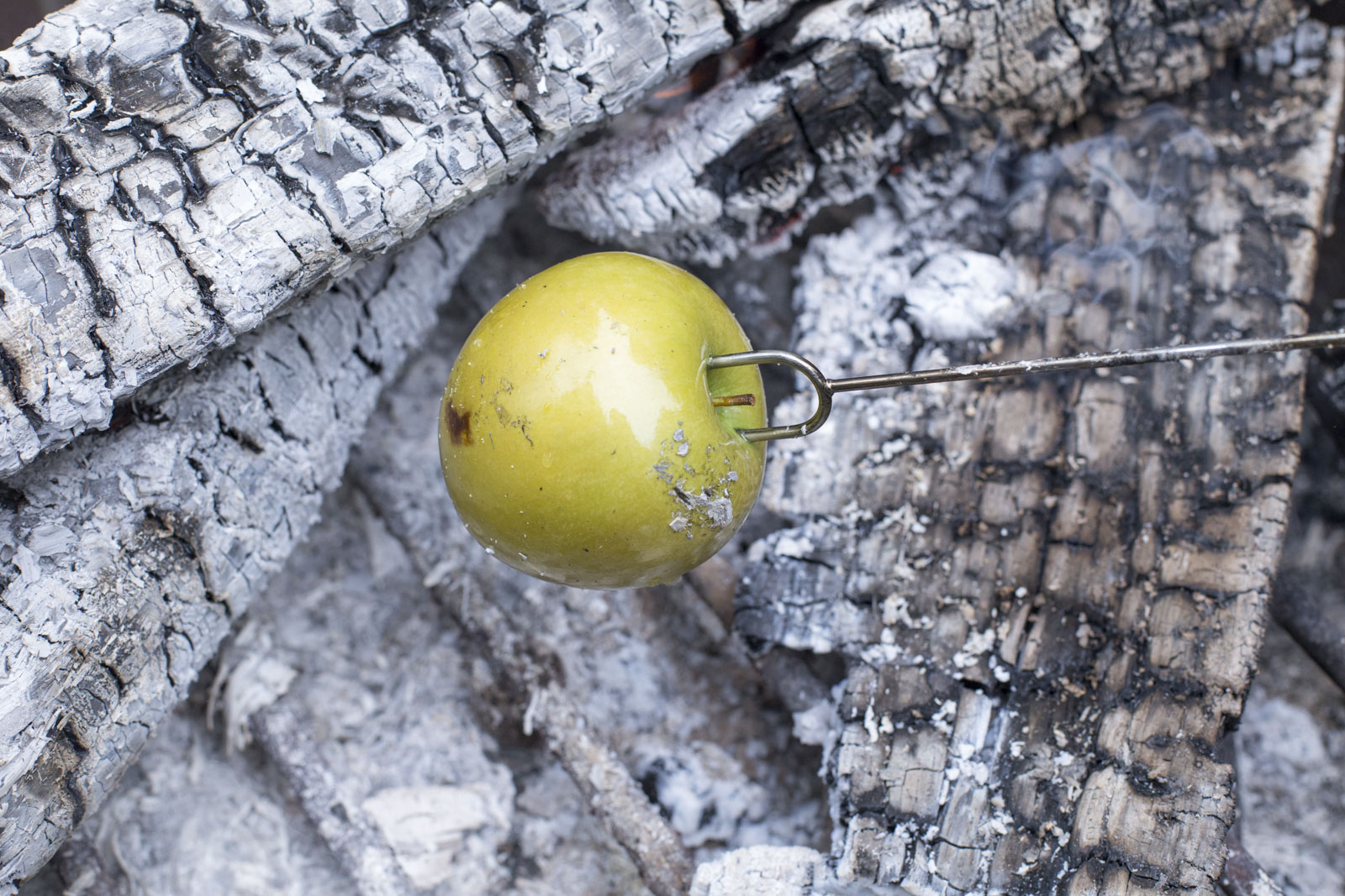 roast apple in fire