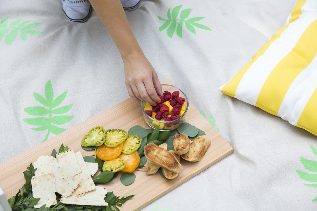 drop cloth picnic blanket