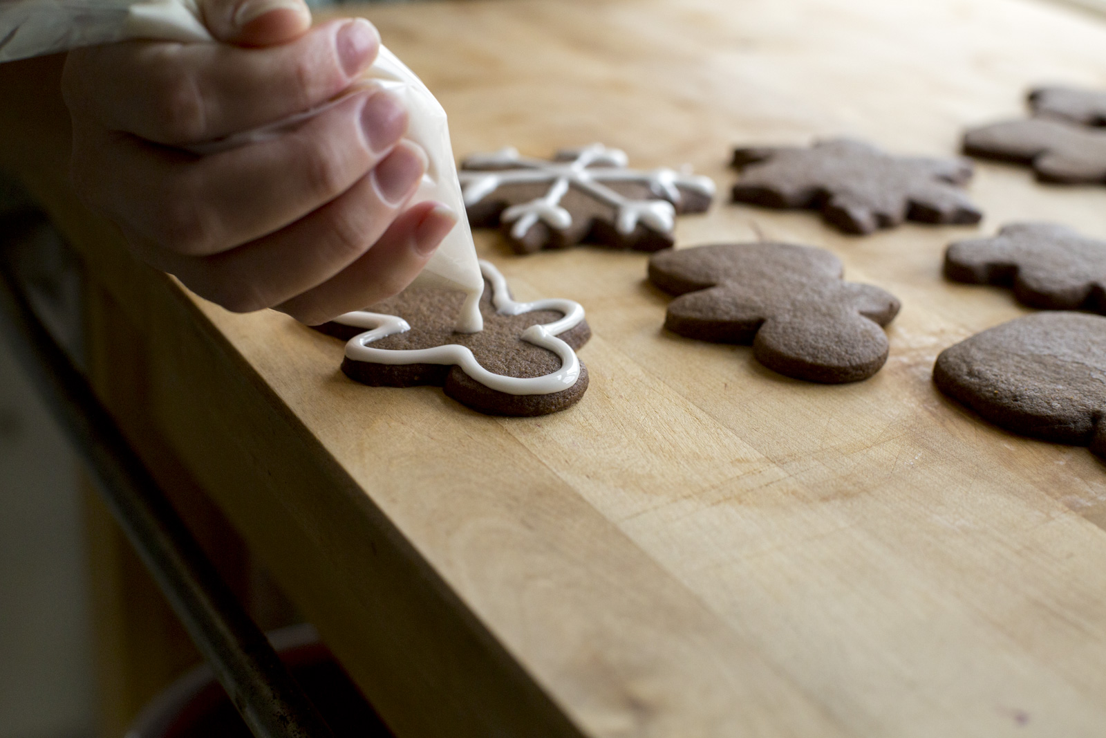 DunnDIY-SeattleWA-ChristmasCookies-15_16