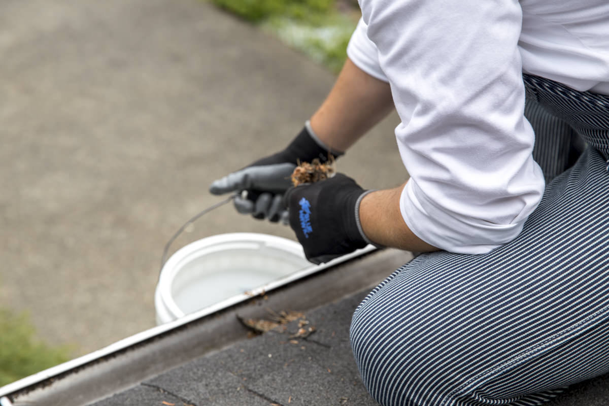 Dunn DIY How to Clean Your Gutters Like A Professional Seattle WA 6