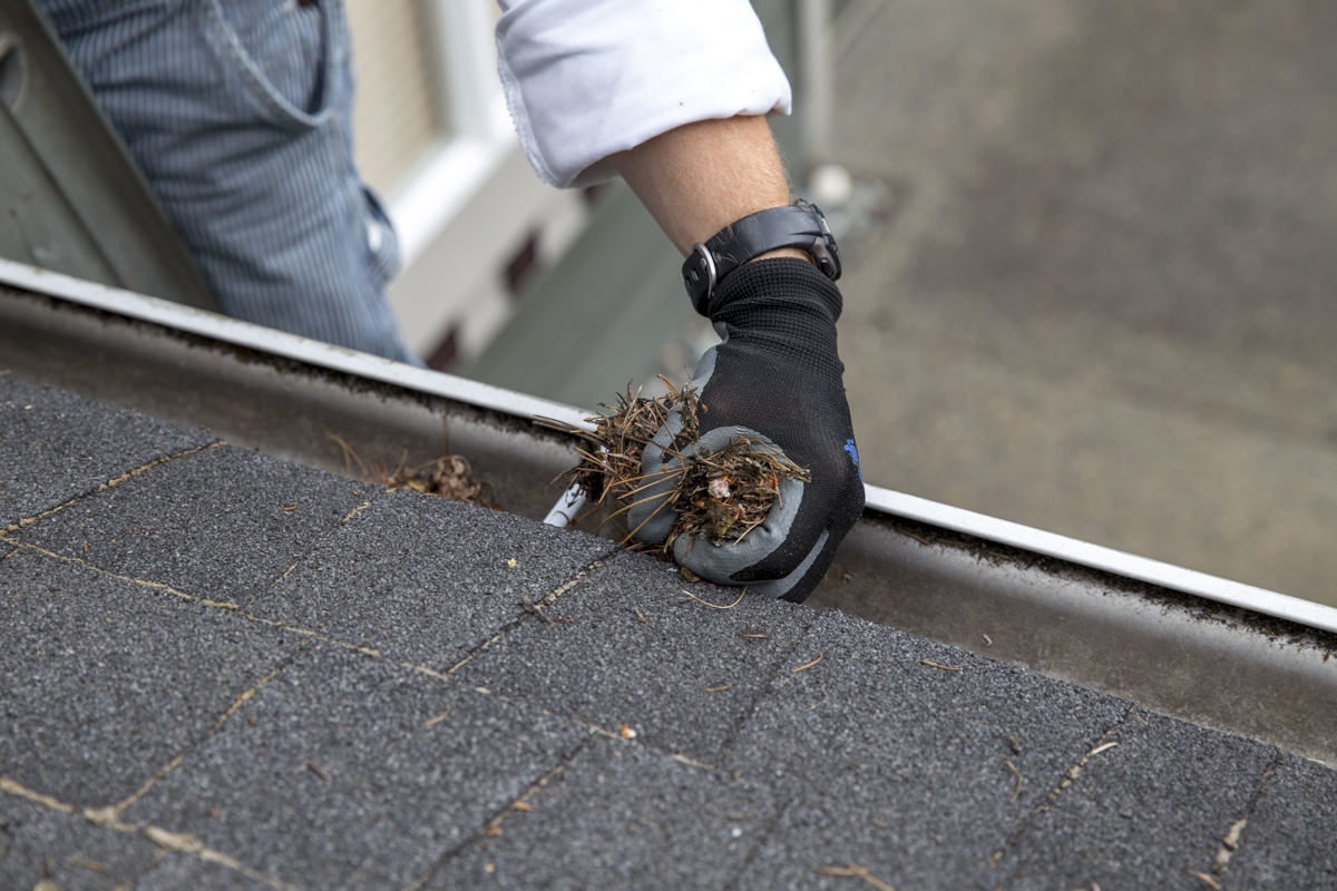 Dunn DIY How to Clean Your Gutters Like A Professional Seattle WA 5