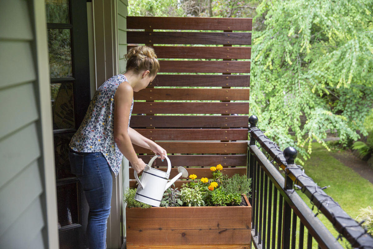 watering diy herb garden