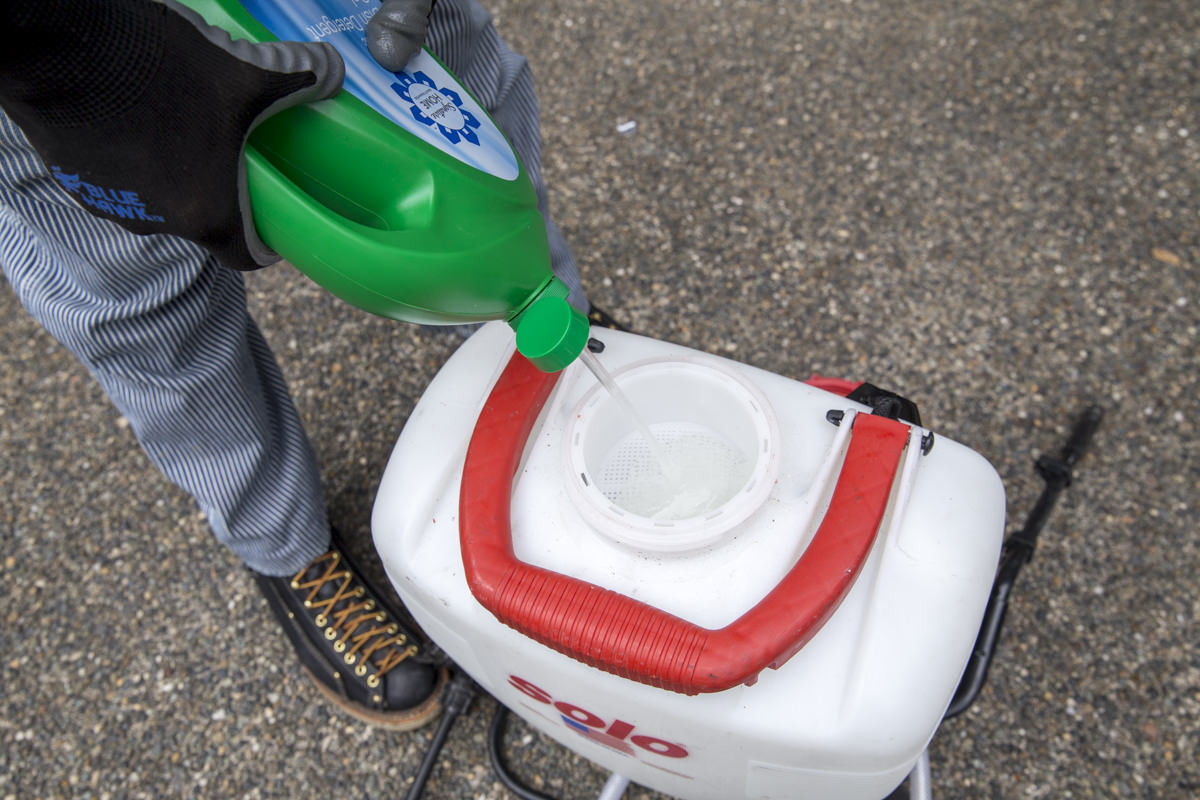 adding cleaner to roof sprayer