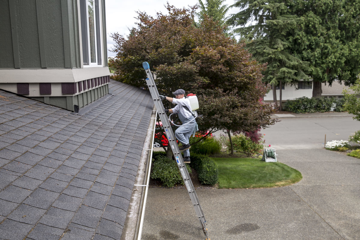 climbing ladder to clean roof