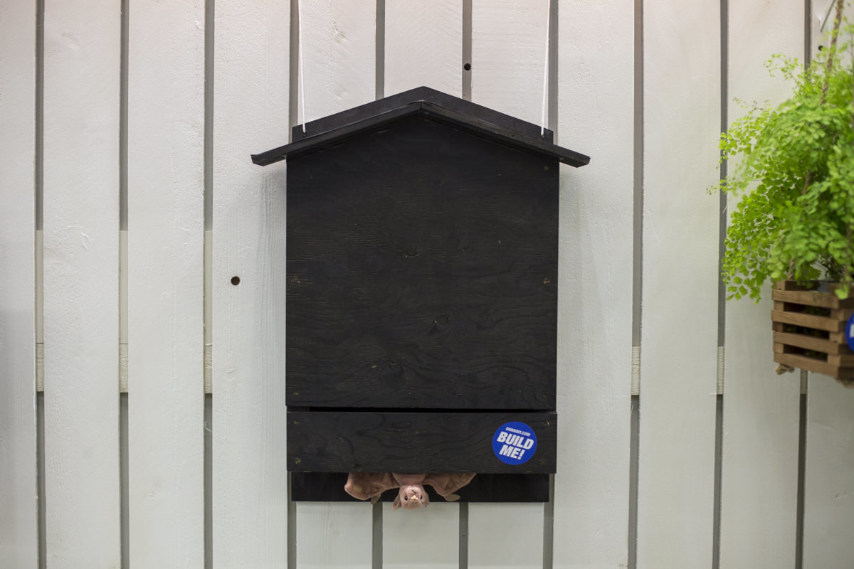 build a bat house at Seattle garden show