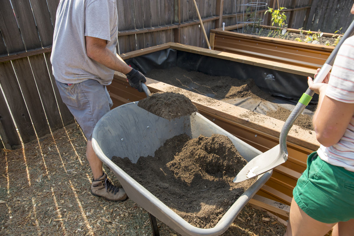 adding soil to raised planter bed
