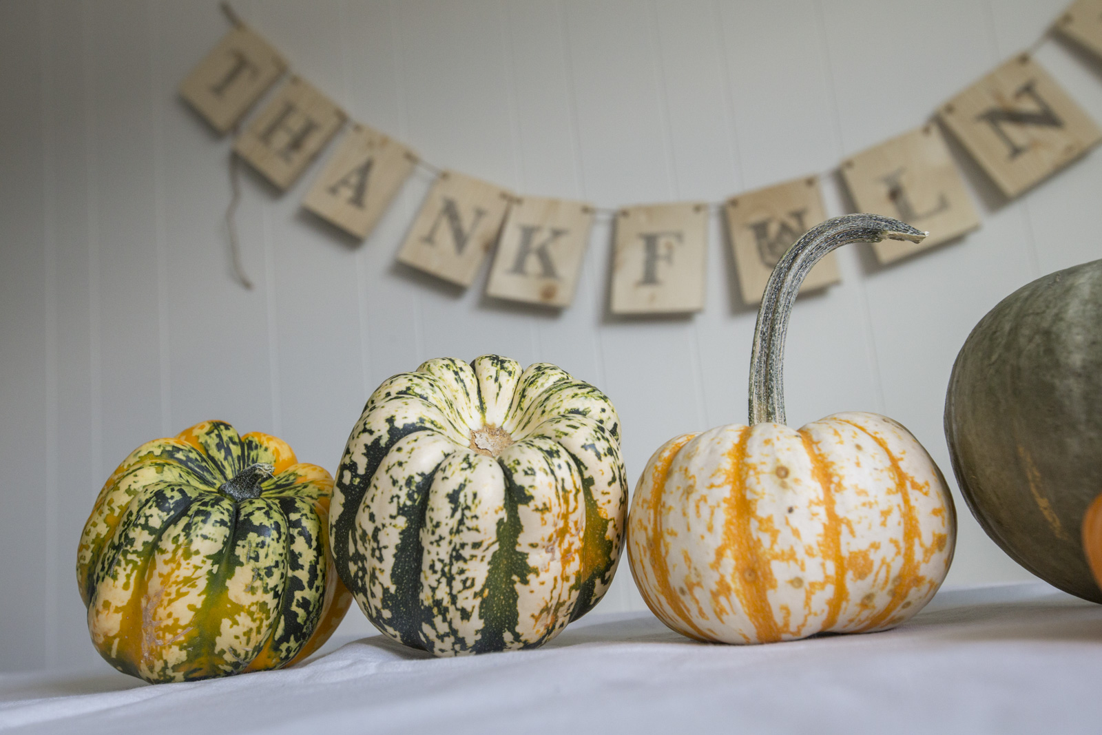 diy thanksgiving home decorations