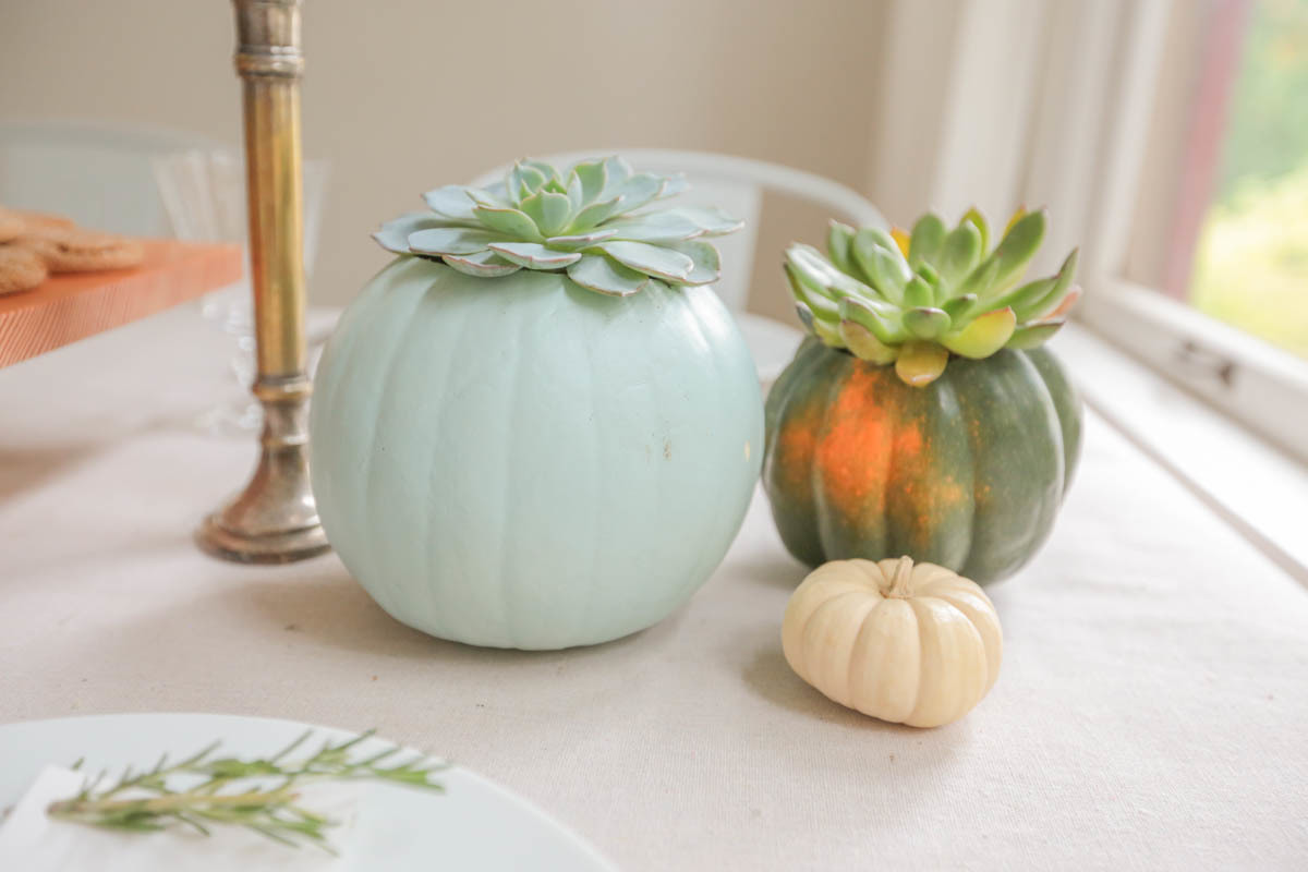 mini pumpkin planters