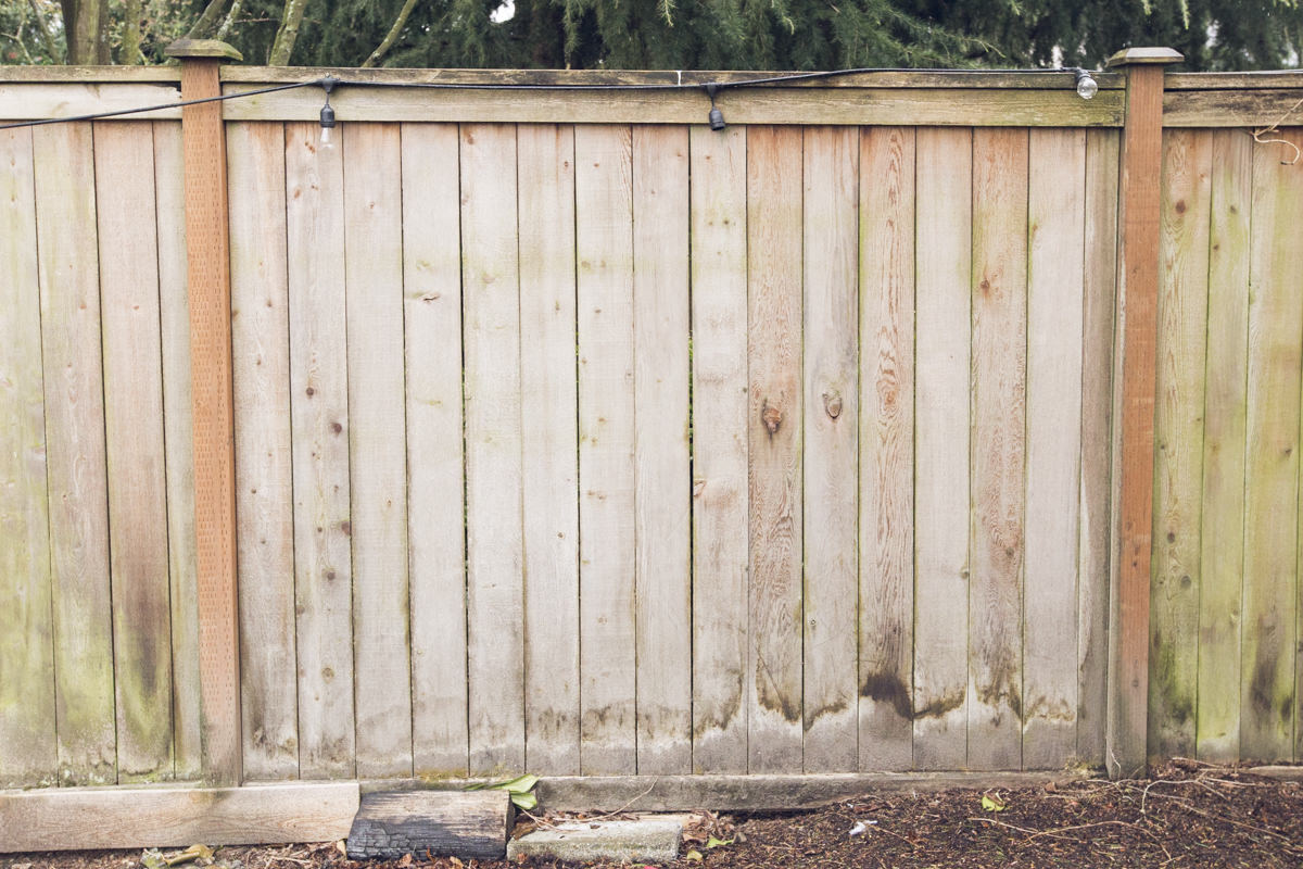 how to refresh a cedar fence with wet and forget
