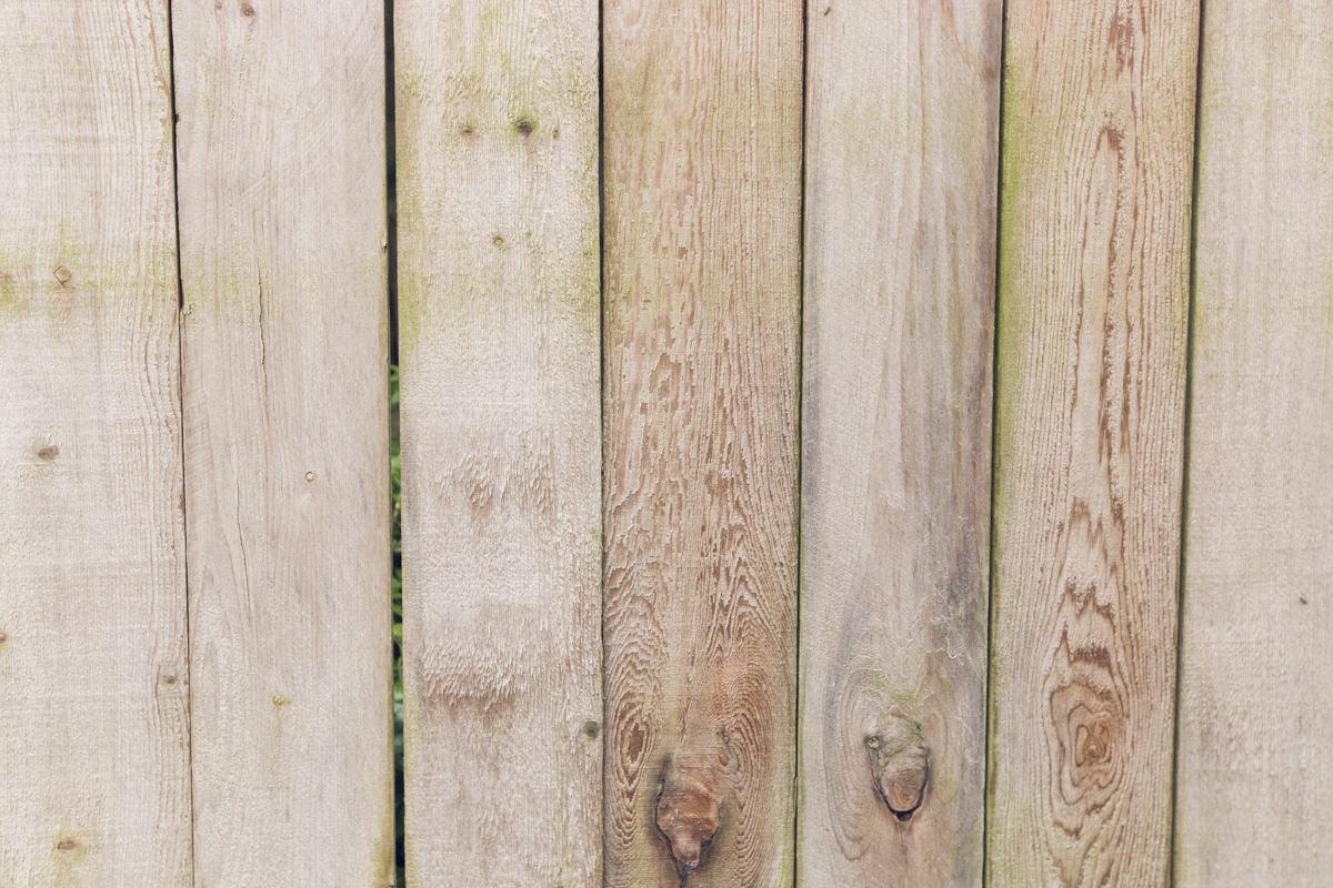 clean cedar fence